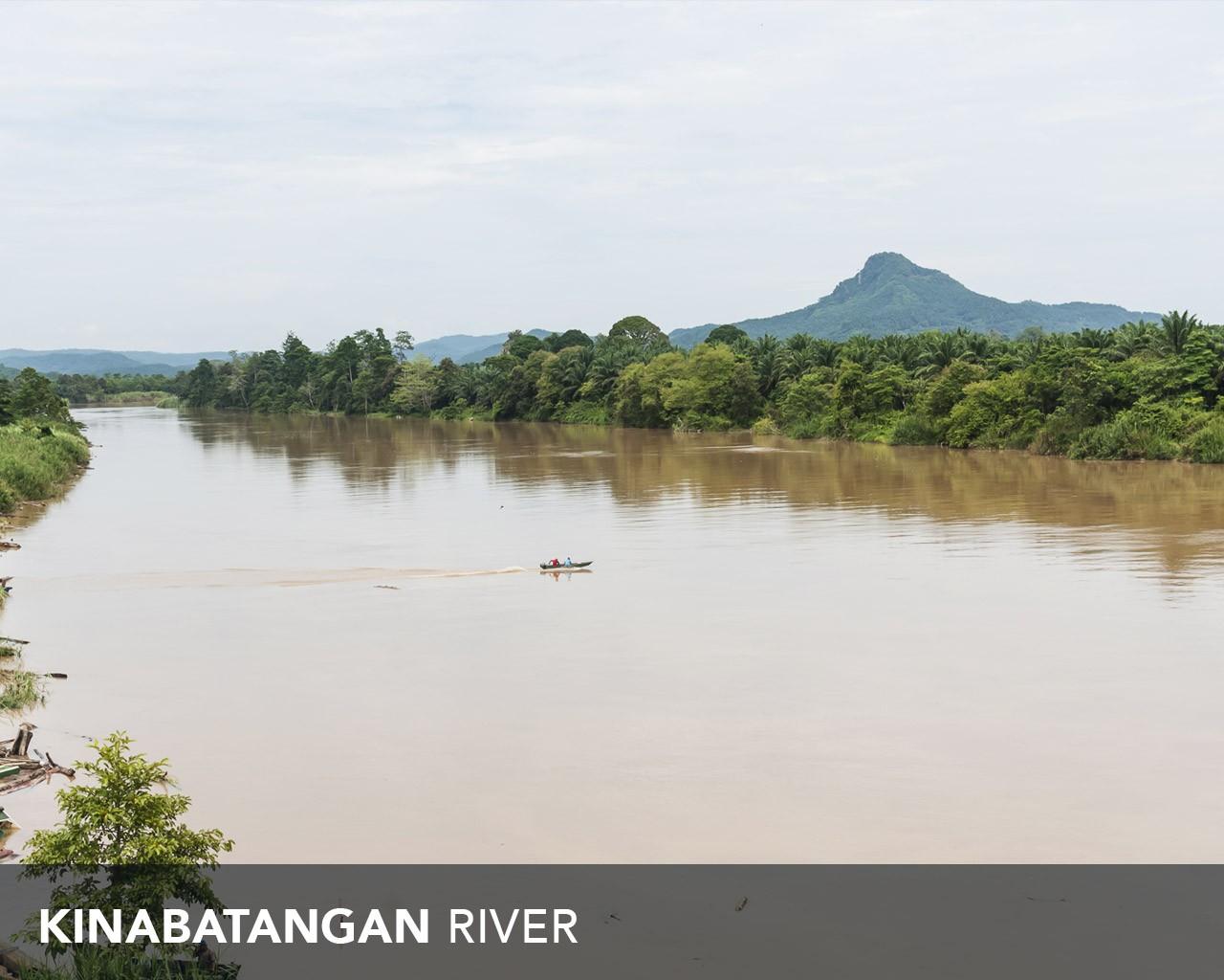 Kinabatangan River, Sandakan