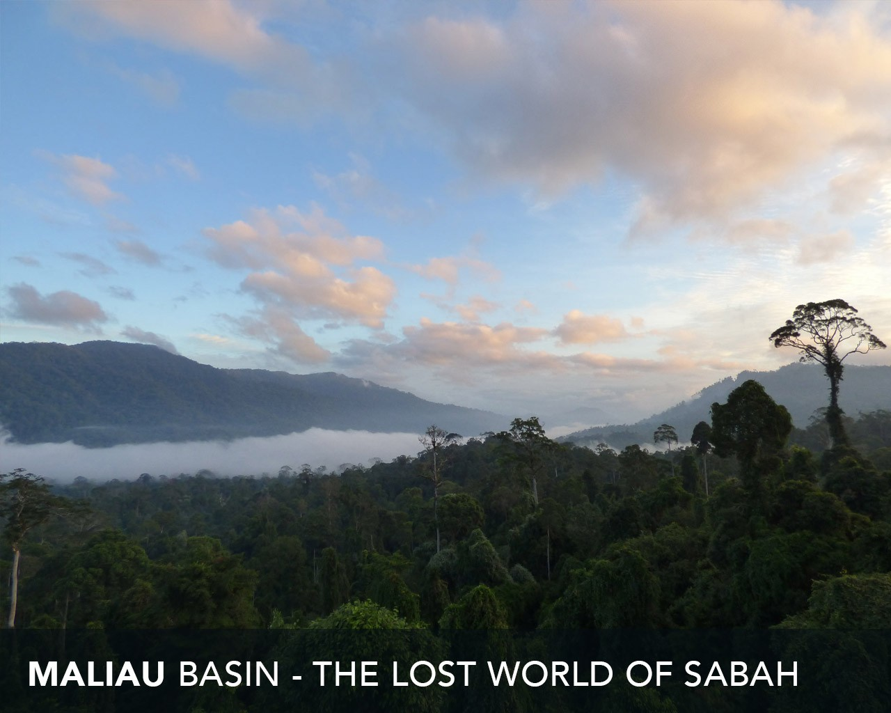 Maliau Basin - The Lost World of Sabah
