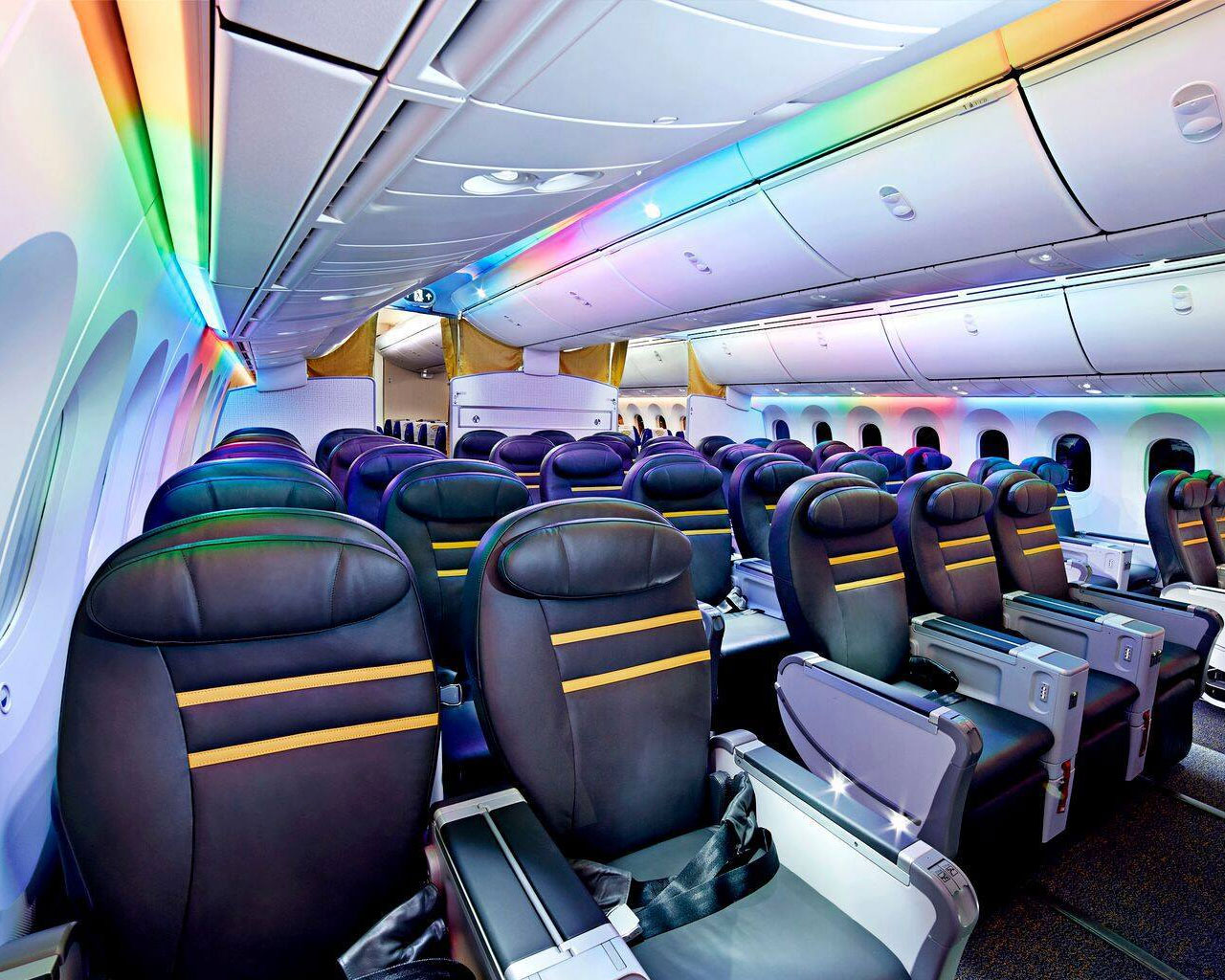 Scoot with Dreamliner 787. Colourful mood lights that change depending on the time of the day. Image from Scoot Official Facebook Page